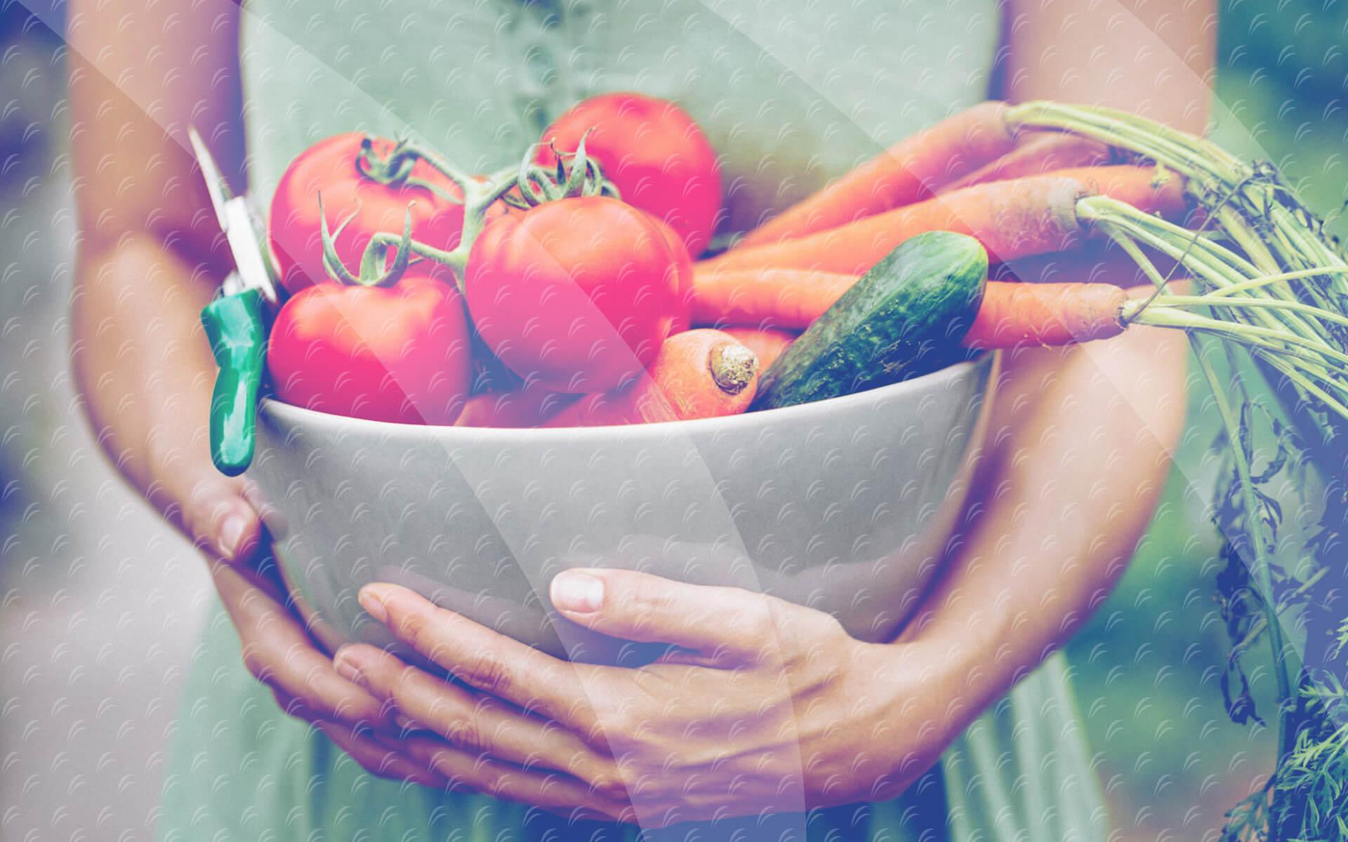Cultivamos alimentos frescos